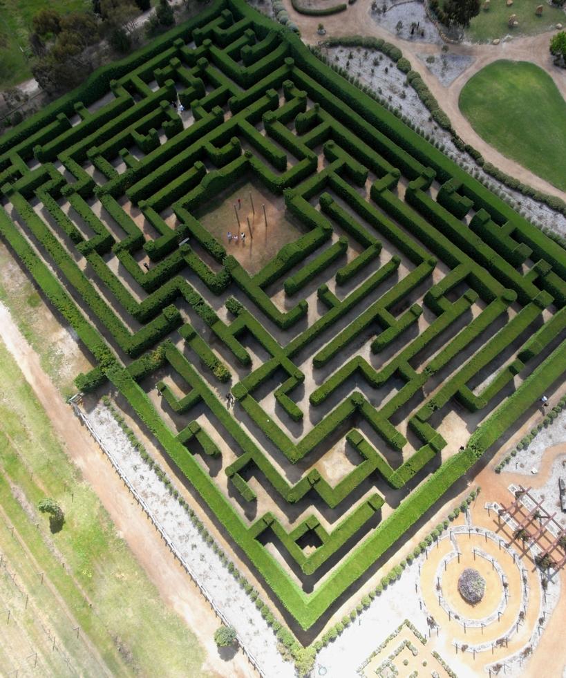 2010 maze edited1