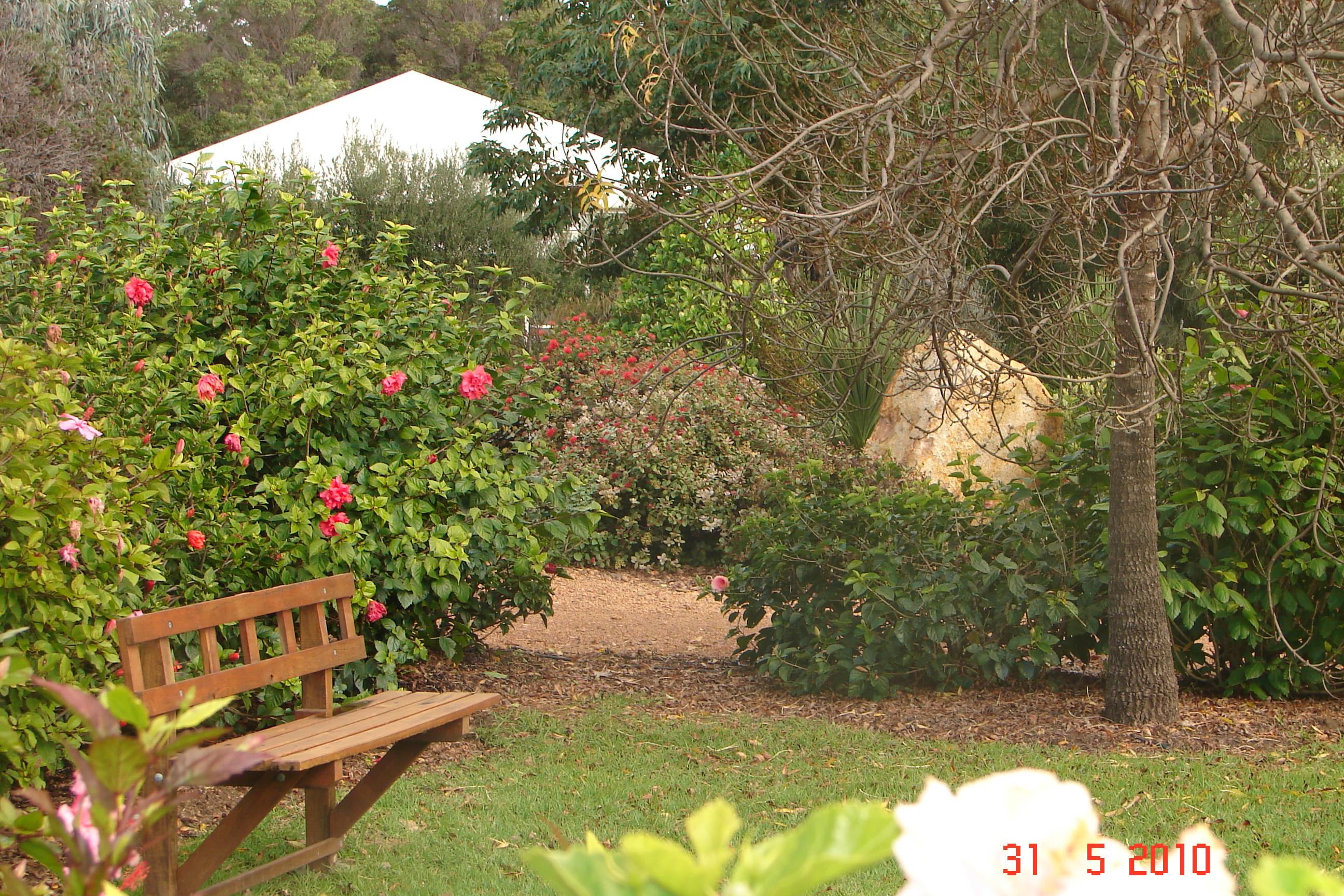 maze gardens 078